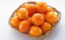 橙子蒸蛋治咳嗽吗 橙子蒸蛋适合什么咳嗽